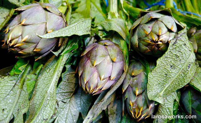 Sicilian artichoke, food and wine 2015 Drawing Light & Space Tour of Sicily