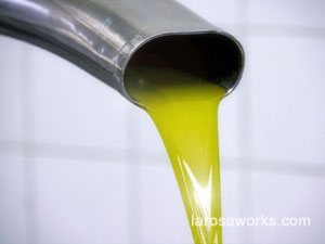 A close-up of fresh pressed oilve oil.